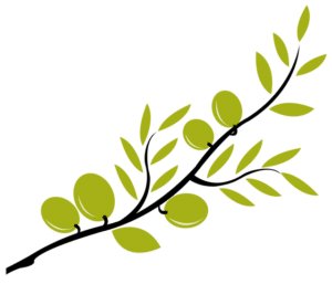 olive branch2